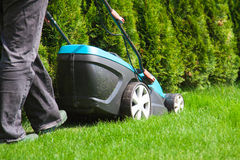Green grass is mowed lawn mower Stock Images