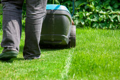 Green grass is mowed lawn mower Royalty Free Stock Photos