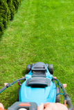 Green grass is mowed lawn mower Royalty Free Stock Photography