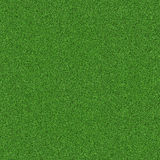 Green grass, natural background texture, fresh spring green grass Stock Photo