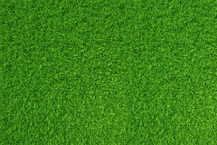 Green grass. natural background texture. high resolution. 3d rendering. Green grass. natural background texture. high resolution. 3d rendering vector illustration