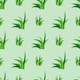 Green grass nature design seamless pattern vector illustration grow herb agriculture nature background Stock Photos