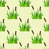 Green grass nature design seamless pattern vector illustration grow herb agriculture nature background Royalty Free Stock Photography