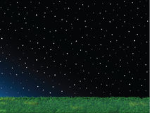 Green Grass Night Sky Landscape Royalty Free Stock Photography