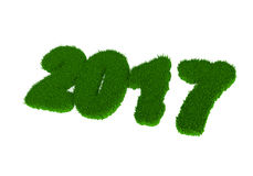 Green grass with the number 2017 Stock Images