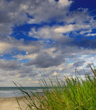 Green grass by the ocean royalty free stock photos