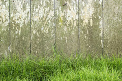 Green grass with old wood fence background Royalty Free Stock Photography