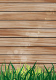 Green grass  over wood fence background Royalty Free Stock Image