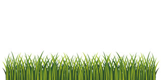 Green grass. Page bottom decoration.  illustration. Vector. Fresh summer grass. Royalty Free Stock Photography