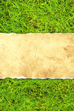 Green grass and paper Royalty Free Stock Photo