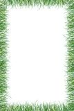 Green grass paper summer background Royalty Free Stock Photography