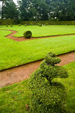 Green grass at park Stock Photos