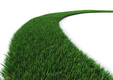 Green Grass path Stock Photography