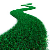 Green Grass path Royalty Free Stock Photo