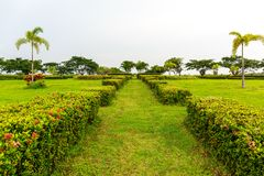 Green Grass Path Leading to the Center of a Garden Accompanied b Stock Photography