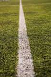 Green grass pattern for football sport, Football field, soccer field, team sport texture. White stripe on it. Close up. Focus Stock Image