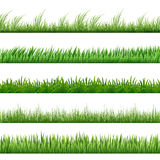Green grass pattern set. Vector macro borders isolated on white background Royalty Free Stock Images