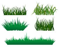 Green grass patterns. Green grass elements for design and decorate Stock Photography