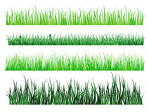 Green grass patterns. Green grass and field elements isolated on white background Royalty Free Stock Photos