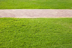 Green grass and paved lane in park Royalty Free Stock Photography