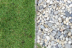 Green grass with Pebbles, Stone and grass in garden, grass with rock, Pebble with Grass Stock Image