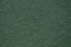 Green Grass Photo for Background Texture.  Stock Image