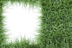 Green grass photo frame. Isolated on white background Royalty Free Stock Image