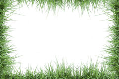 Green grass photo frame. Isolated on white background Stock Photos