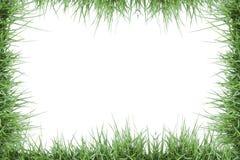 Green grass photo frame Stock Photos