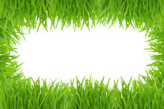 Green grass photo frame isolated on white Royalty Free Stock Image
