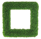 Green grass picture frame Royalty Free Stock Photo