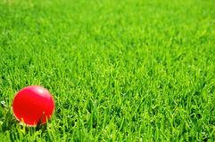 Green grass pink ball Royalty Free Stock Images