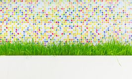 Green grass plant decorating. On the wall. Background Royalty Free Stock Photo