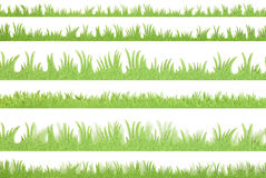 Green grass. Plastic green grass in different size and gorup Royalty Free Stock Images