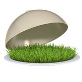 Green grass on a plate with a lid Royalty Free Stock Photography