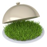 Green grass on a plate with a lid. Isolated render on a white background stock illustration