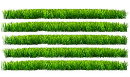 Green grass, PNG transparent background Stock Photos