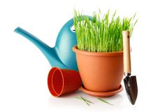 Green grass in the pot with shovel tool Royalty Free Stock Photos