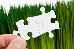 Green grass and Puzzle Royalty Free Stock Photos