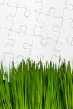 Green grass and Puzzle Royalty Free Stock Images