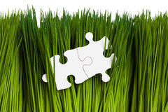 Green grass and Puzzle Royalty Free Stock Photography