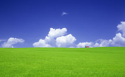 Green grass and red roof house Stock Photos