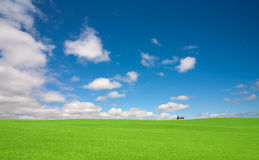 Green grass and red roof house Stock Images