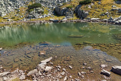 Green grass and reflection in small Lake, Rila Mountain Stock Photography