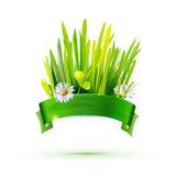 Green grass and ribbon label Royalty Free Stock Photo