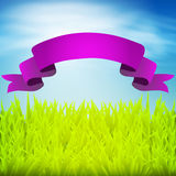 Green grass with ribbon Royalty Free Stock Photography