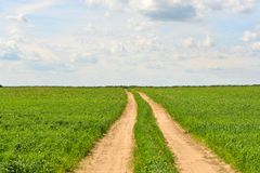 Green grass, road and clouds Royalty Free Stock Images