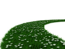 Green grass road Royalty Free Stock Photos