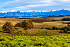 Green Grass Rolling Hills Mountains Snow Stock Photo