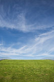 Green grass roof and blue sky. Green grass roof with handrails under blue sky royalty free stock photos